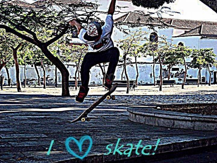 Skate con algunos colegas 1