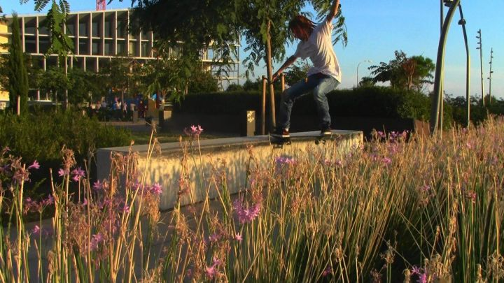 Fakie bs noseslide